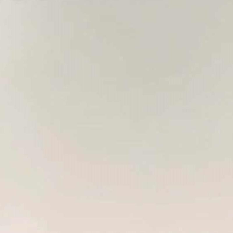 塑粉(半光白)